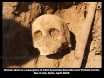 Human skull at a mass grave of 1915 Armenian Genocide, near the Turkish border. Ras ul Ain, Syria.  April 2005.