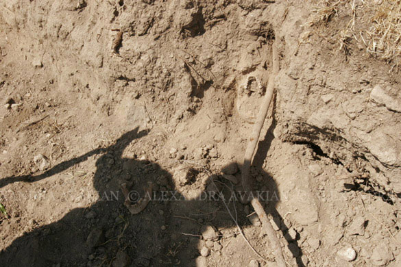 A shadow of a digger cast against remnants of a mass grave site